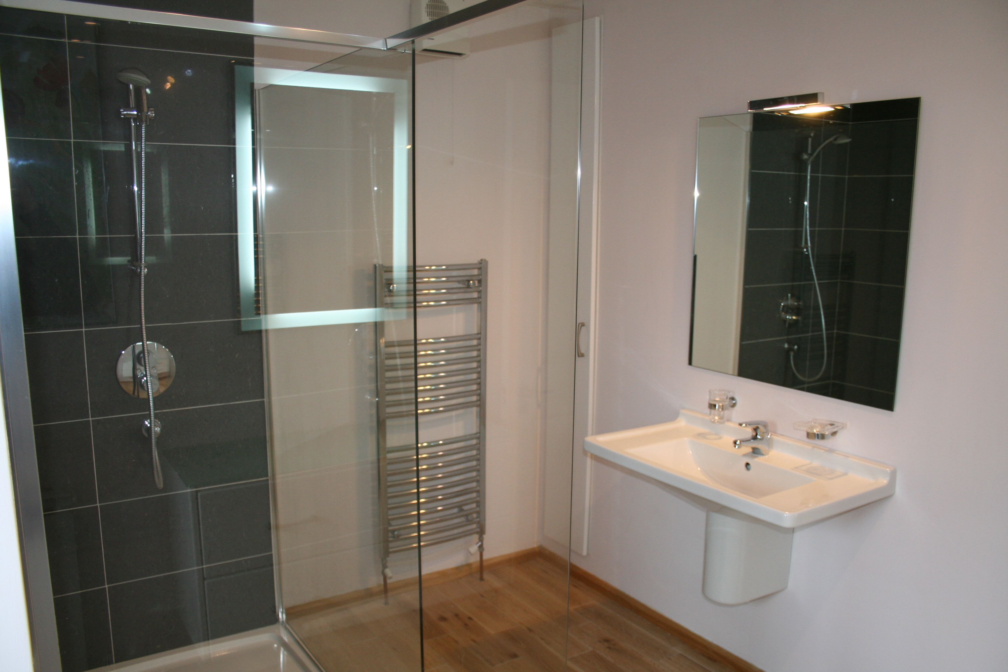 Shower, sink and heated towel rail